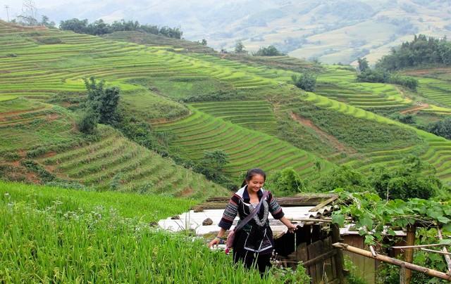 Travel Agent Hanoi