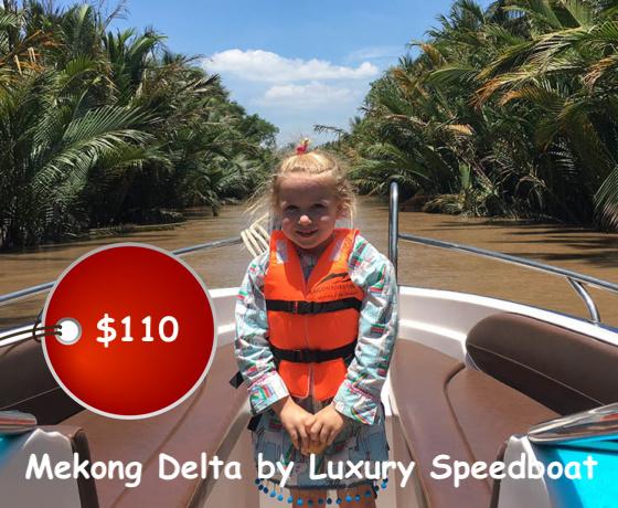Mekong Delta by luxury speedboat